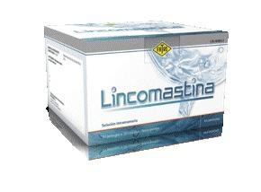Lincomastina